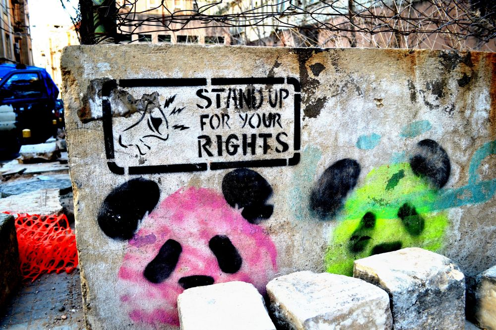 Beyrouth Lebanon graffiti green white panda