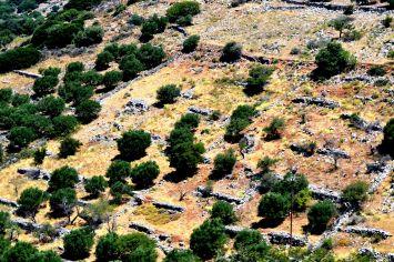 Crète (11)