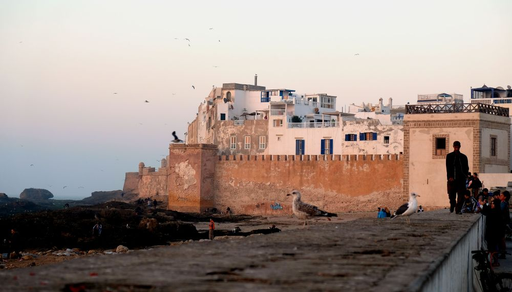 Citadel. Take a walk through Essaouira's fishing port