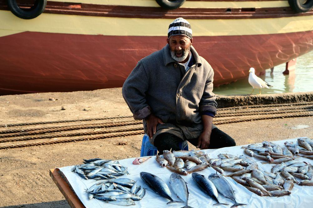 Fisherman 3. Take a walk through Essaouira's fishing port