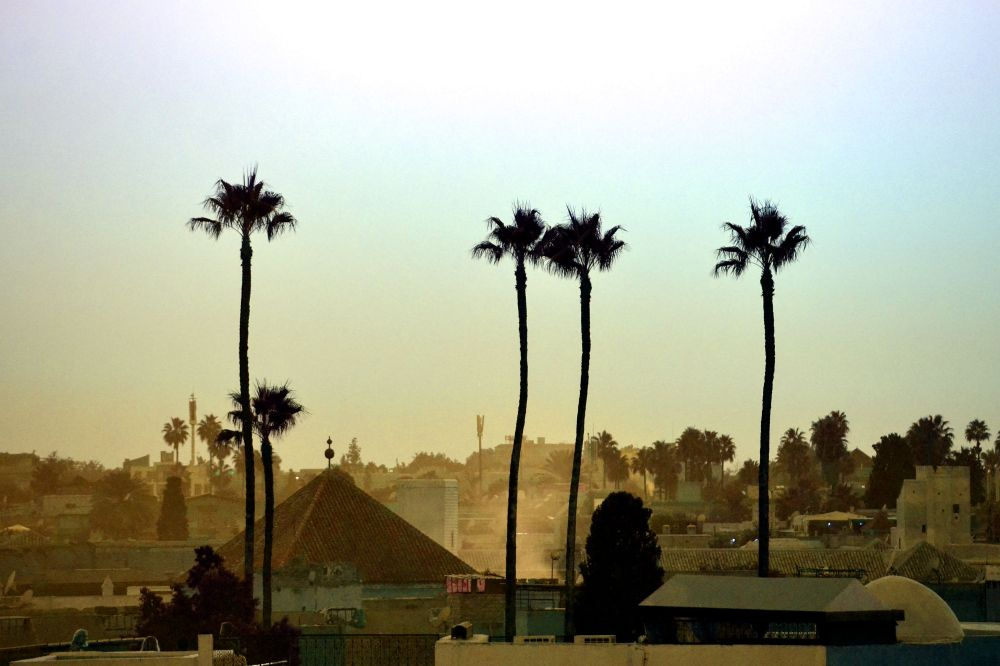 Sunset from the rooftop, Contemplate the city from its rooftops, 5 ways to explore Marrakech
