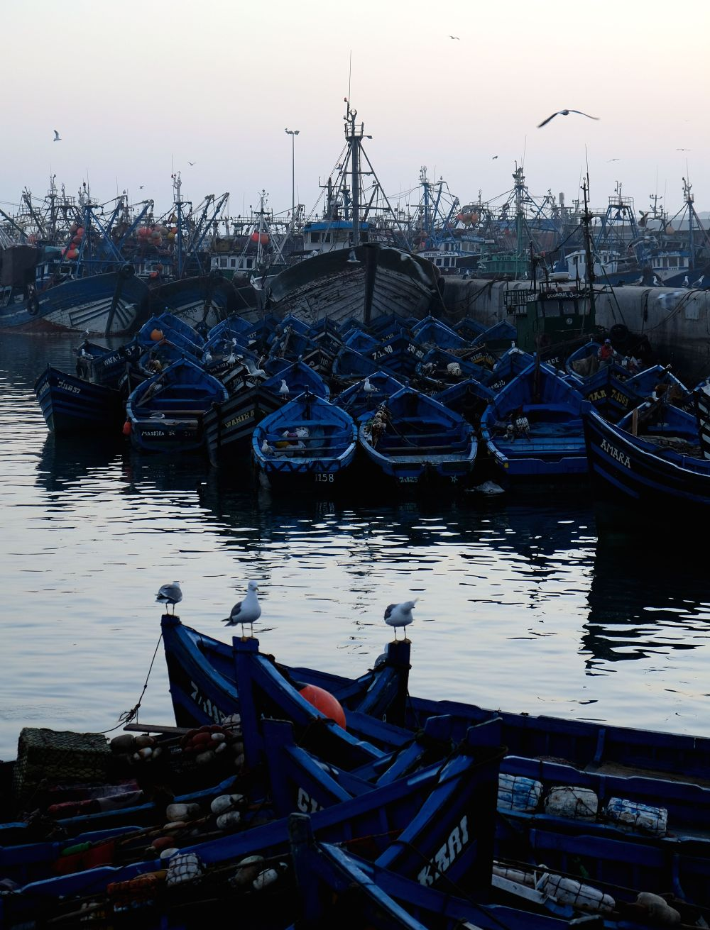 Sunset. Take a walk through Essaouira's fishing port