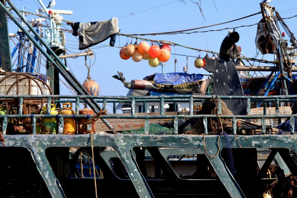 Trawlers 3. Take a walk through Essaouira's fishing port