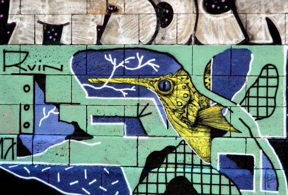 wien-streetart-goldfish