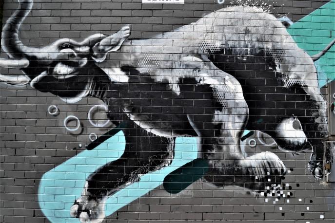 streetart (30)