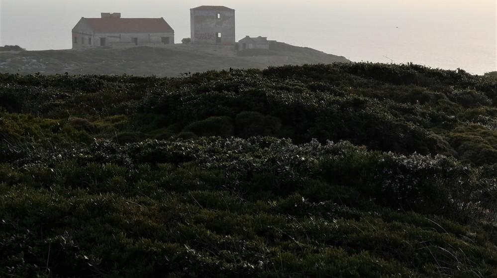 Portugal BELEM BERARDO LISBOA (5)